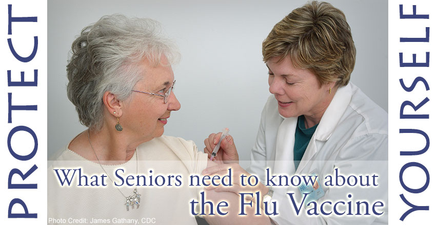 Flu Vaccine Facts For Seniors Alive65