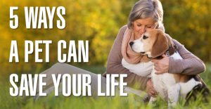 5 Ways a Pet Can Save Your Life